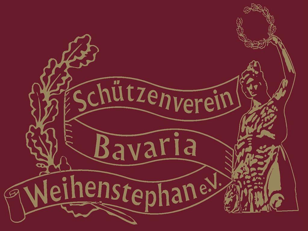 BSW Logo 2